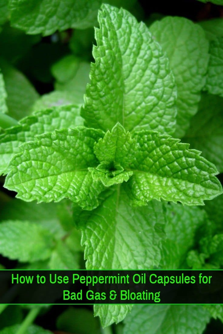 Peppermint Oil Gas and Bloating Remedy