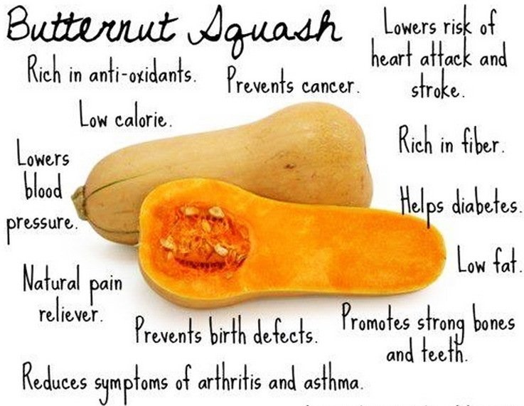 Why is Butternut Squash So Good for You
